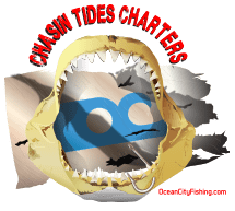 Chasin' Tides Charter